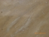 BarrelCeiling/close-up marble-look